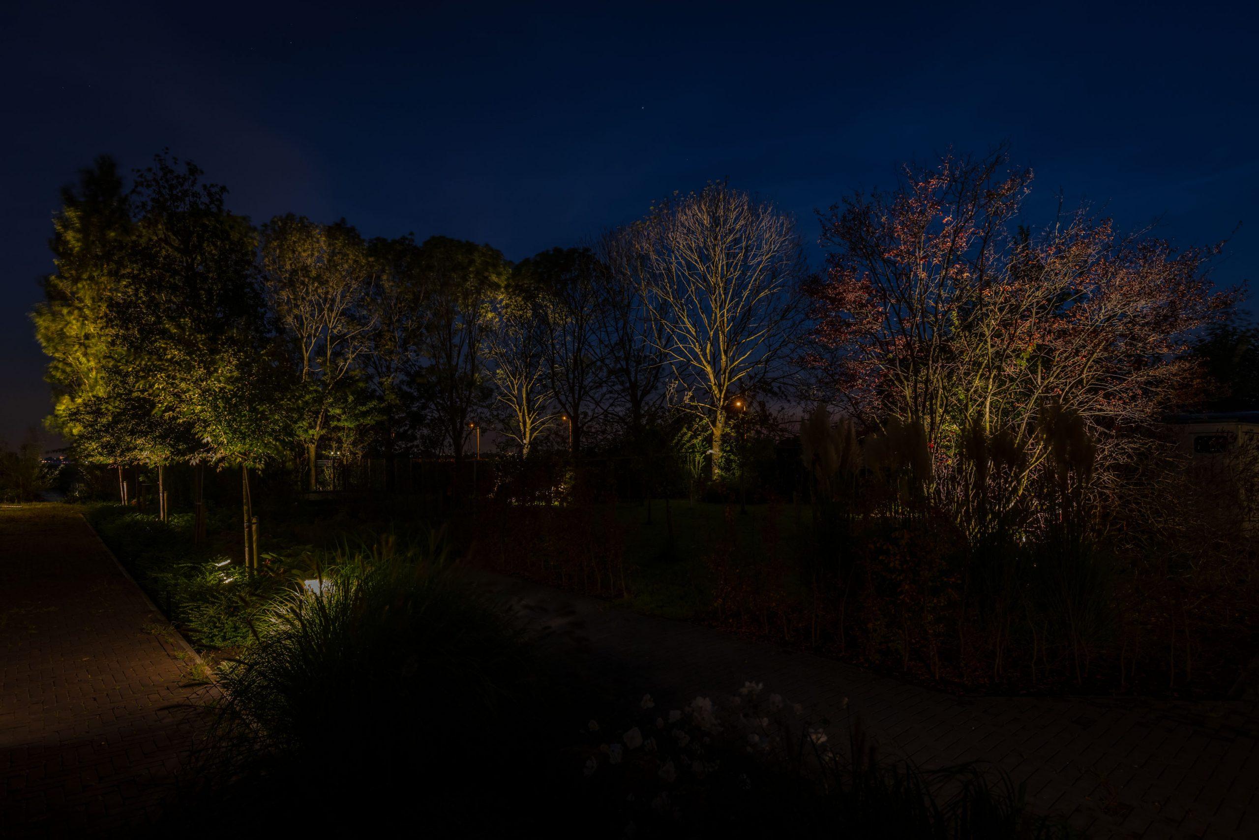 lichtkunstenaar schilderen met buitenverlichting rainforest tuin