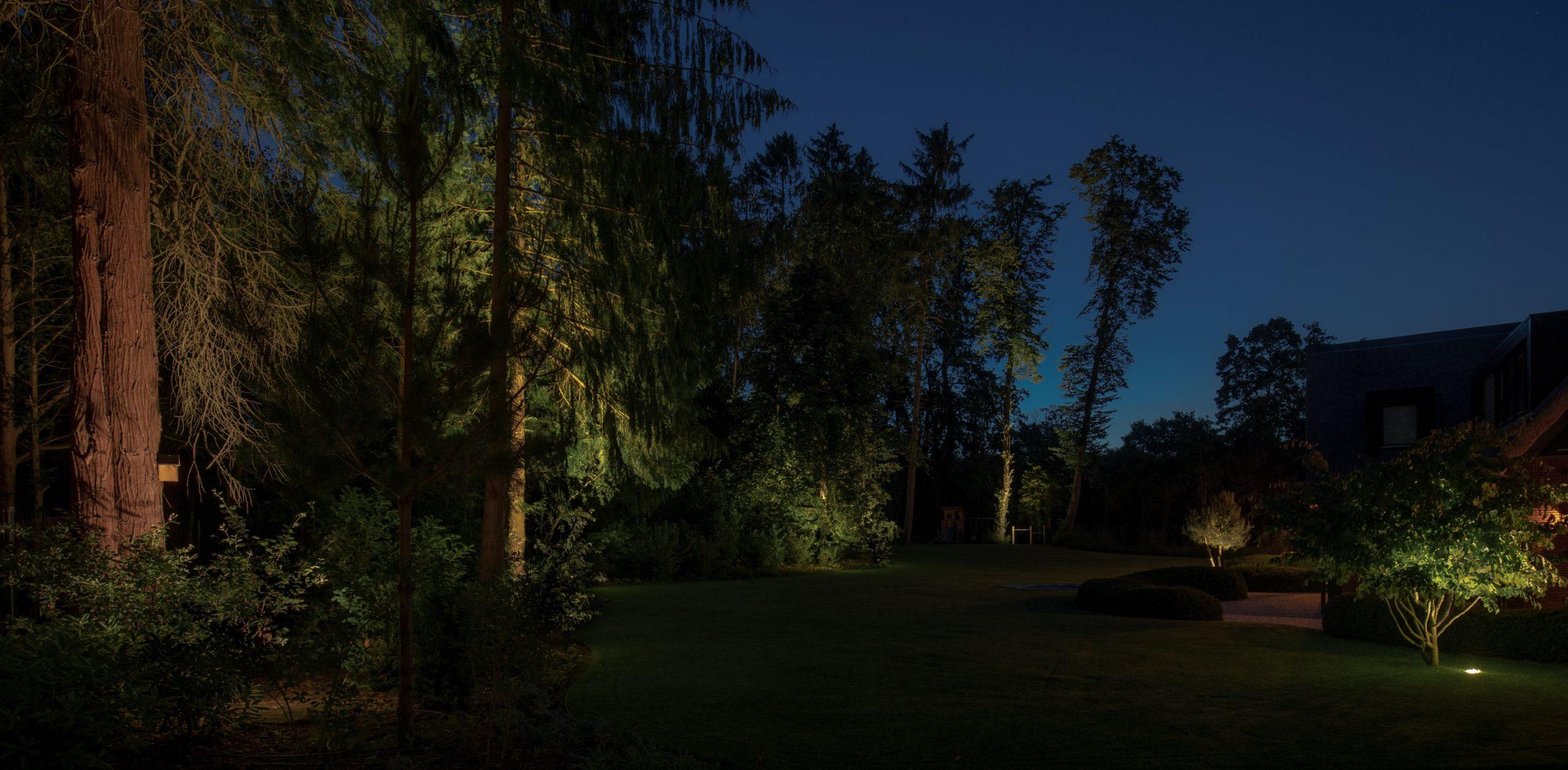 projecten buitenverlichting tuinlichtplan tuinverlichtingsplan buitenverlichting tuinarchitectuur rainforestlighting tuinverlichting regenwoud